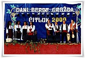 dani_berbe_grozdja